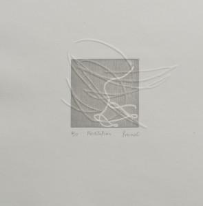 white folds0308